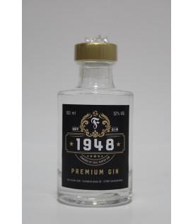 Fortuna Gin 0,1l